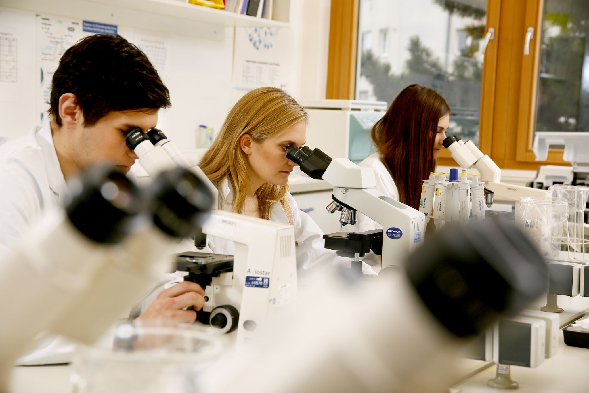 Titelbild Biomedizinische Analytik